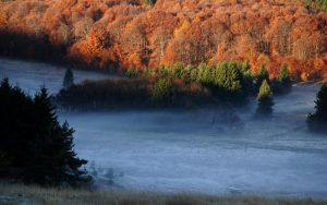 Природен парк Българка