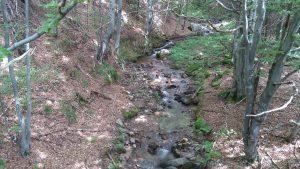 Изворите на река Пробойница